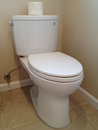 Newly fixed toilet